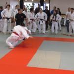 28.04.2012-equipes-mixtes-1416