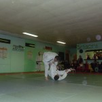 SAM_3311
